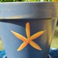 Sponge Painted Flower Pots