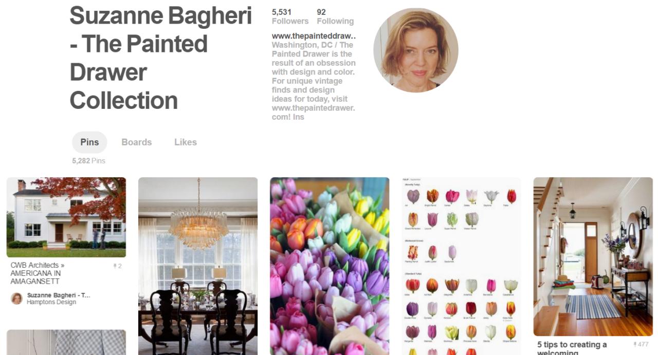 Pinterest Suzanne Bagheri